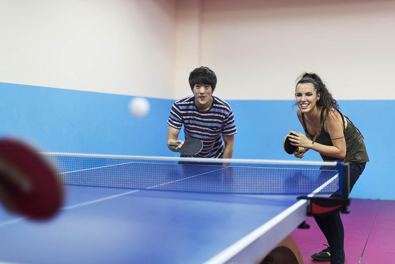 Cheap Ping Pong Tables | Ping Pong Equipment